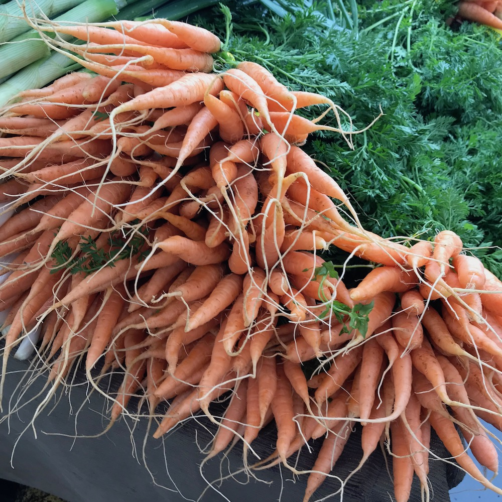 carrots-sweet-leaf-farm-hollywood-farmers-market-portland-oregon