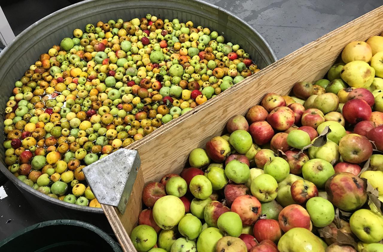 apples-community-cider-portland-cider-company-portland-oregon
